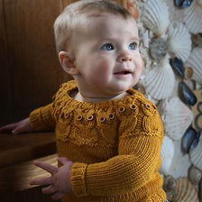 Beginner Sweater Class: Baby Owlet
