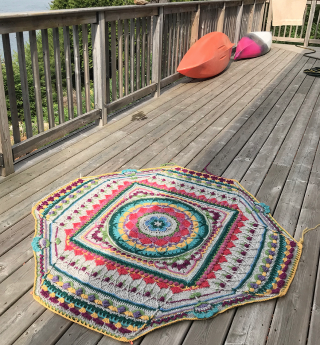 Blocking Barberton Daisy's Sophie's Universe