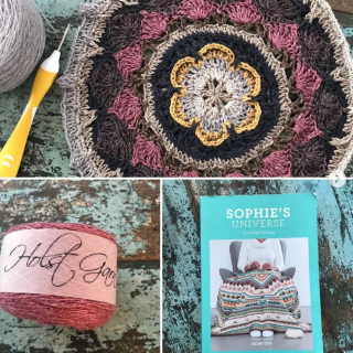 Starting Another Sophie's Universe