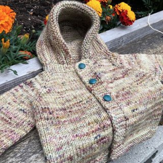 Lillie's Little Sweater with Koigu
