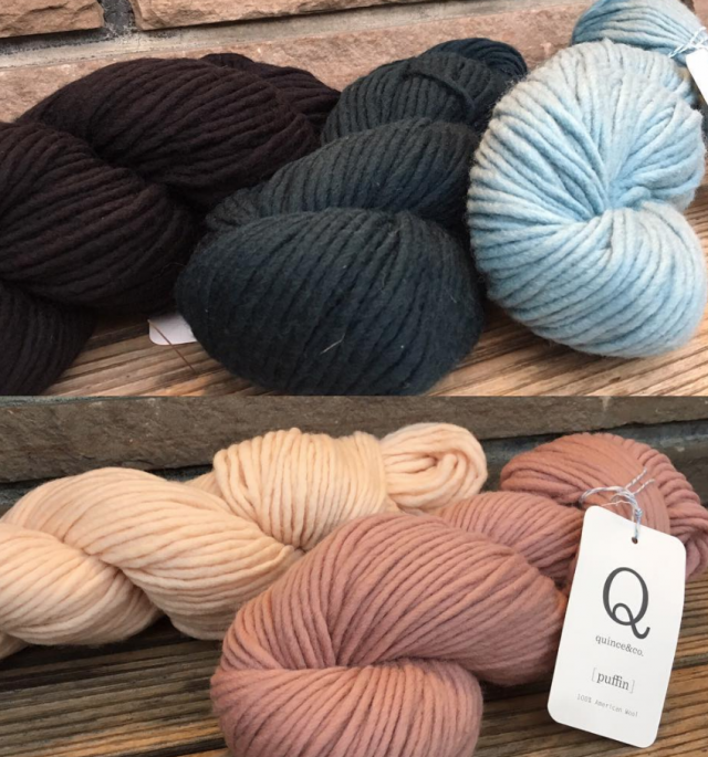 Puffin in Iceland by Quince /& Co