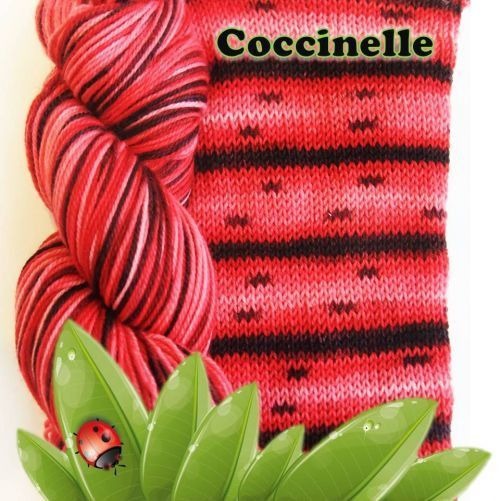 Bis-Sock Coccinelle.