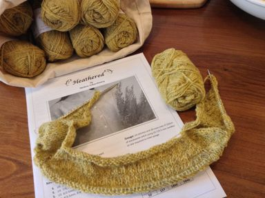 Cast on for yoke of Heathered by Melissa Schaschwary